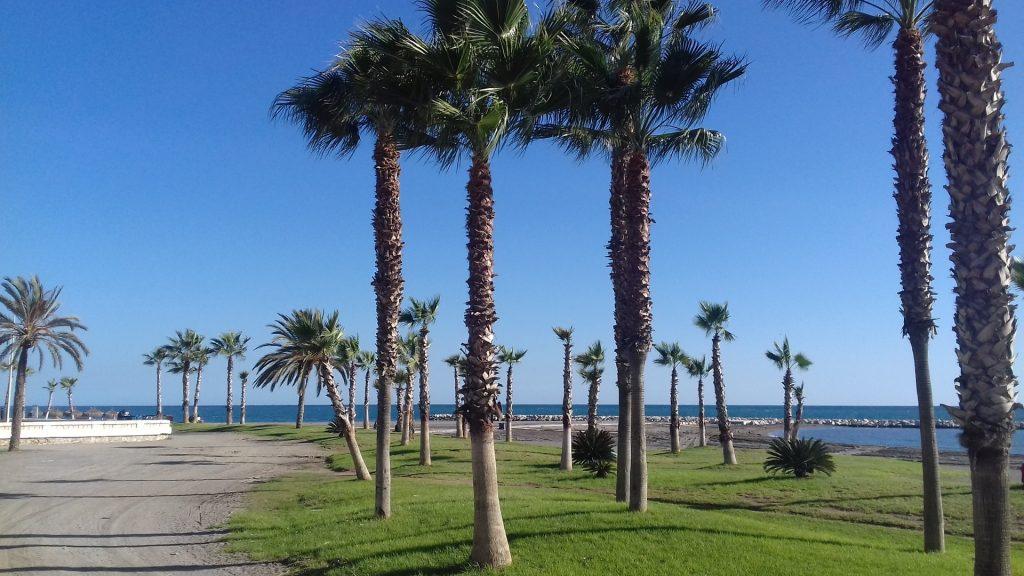 Estudiar en España: playa de Málaga